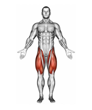 IronmasterUK Quadriceps